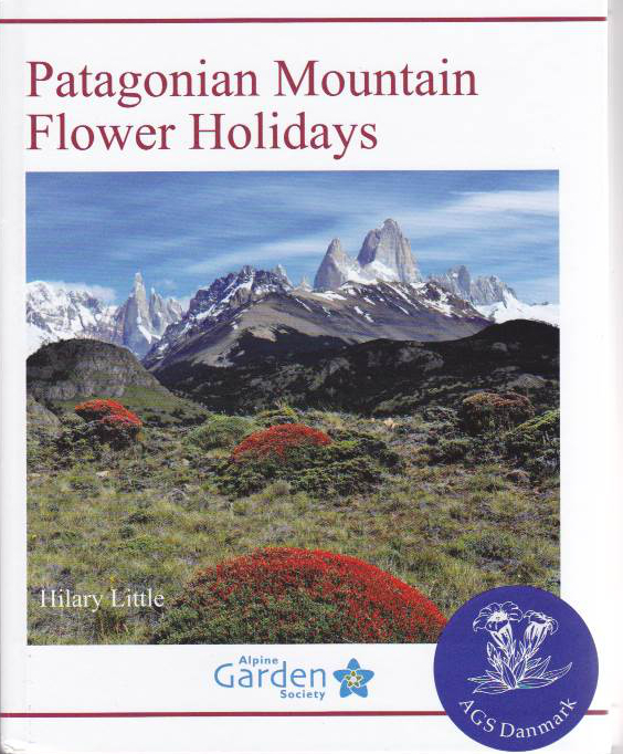 Patagonian moutain flower holidays