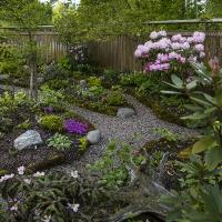 2. Vise et skovbundsbed i haven